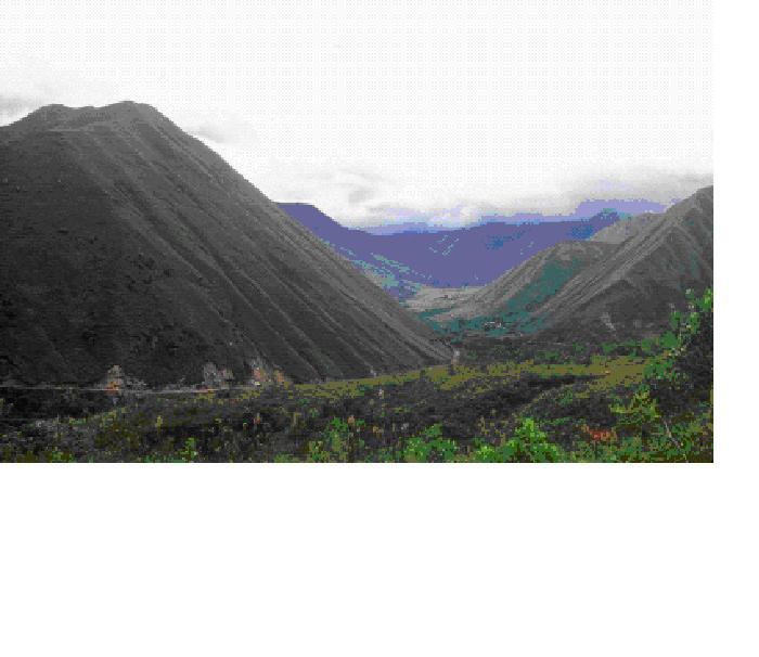 20101228005637-santuario-nacional-tabaconas-namballe.jpg